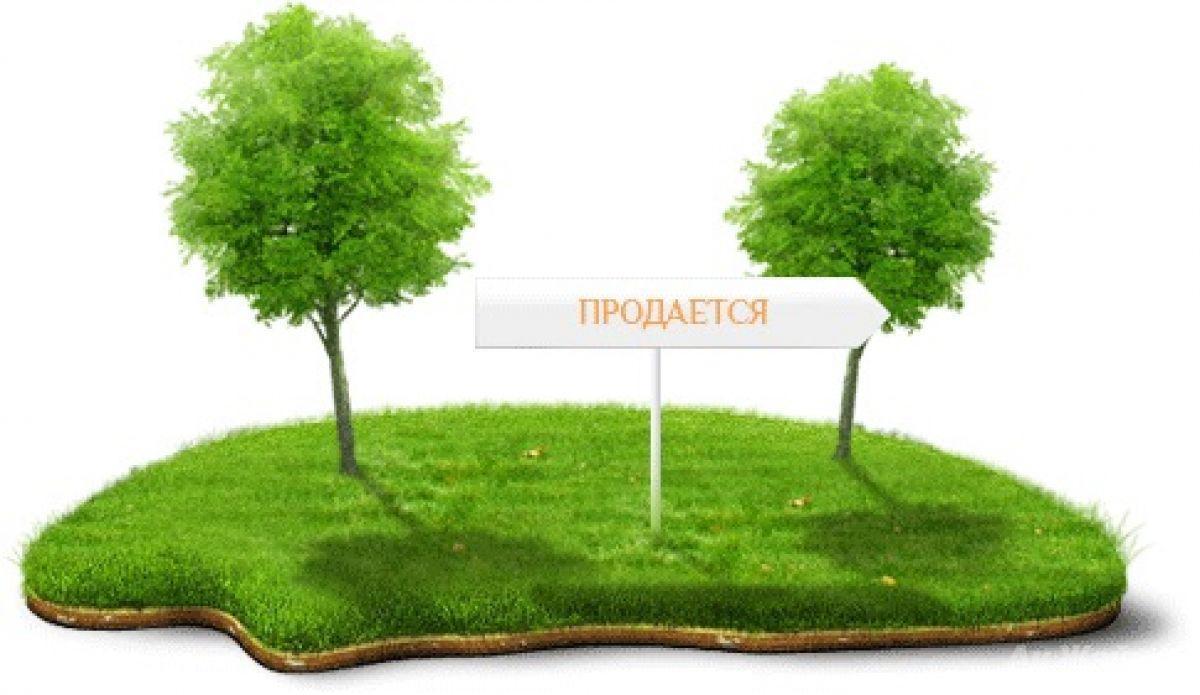 выкуп земельных участков в собственность санкт-петербурга давала только