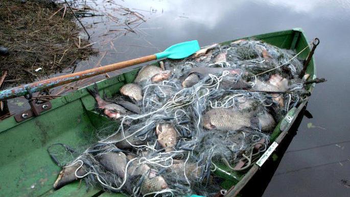правила ловли рыбы в запретный периода