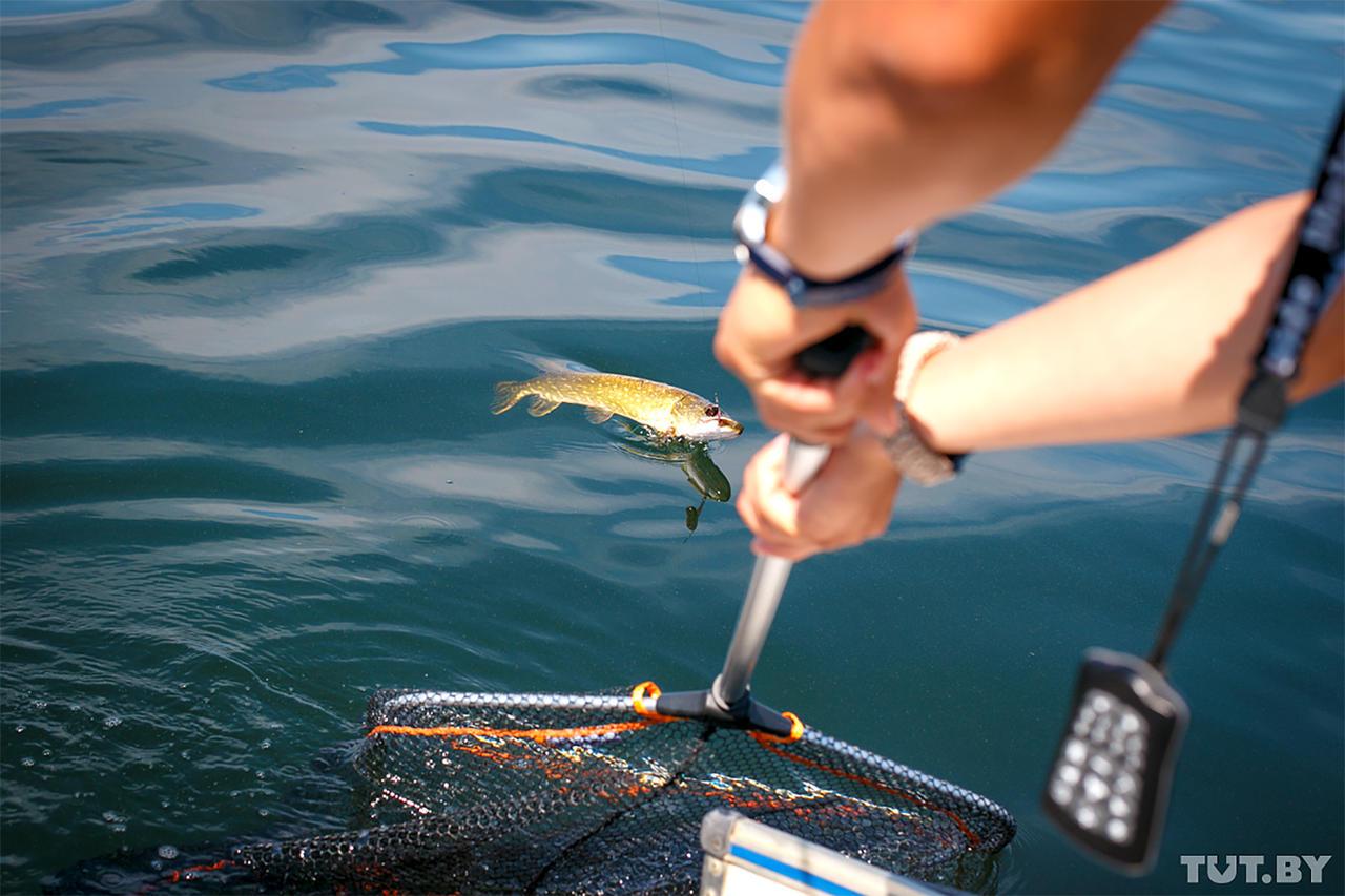 рыбалка видео щука днепр