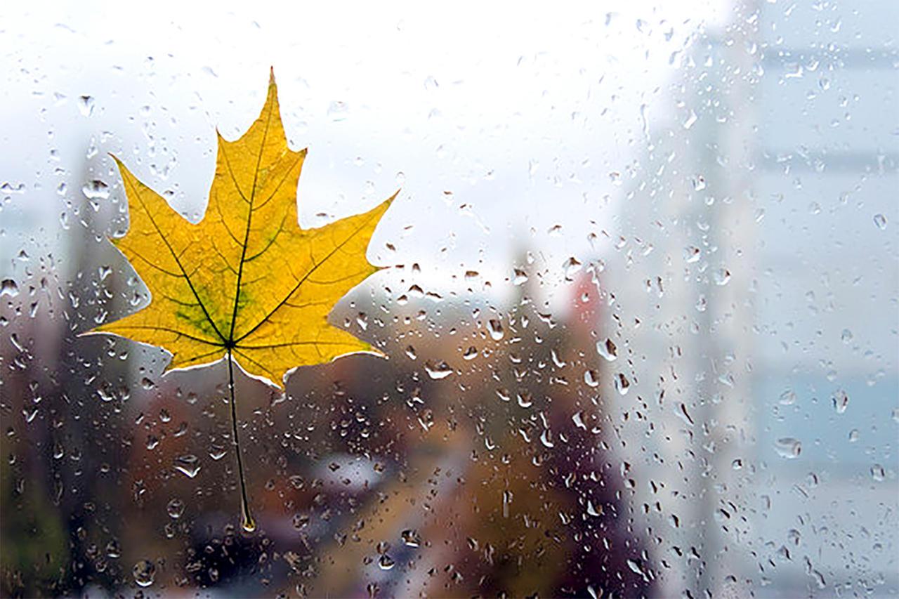 Картинки про дождливую погоду с надписями душевные