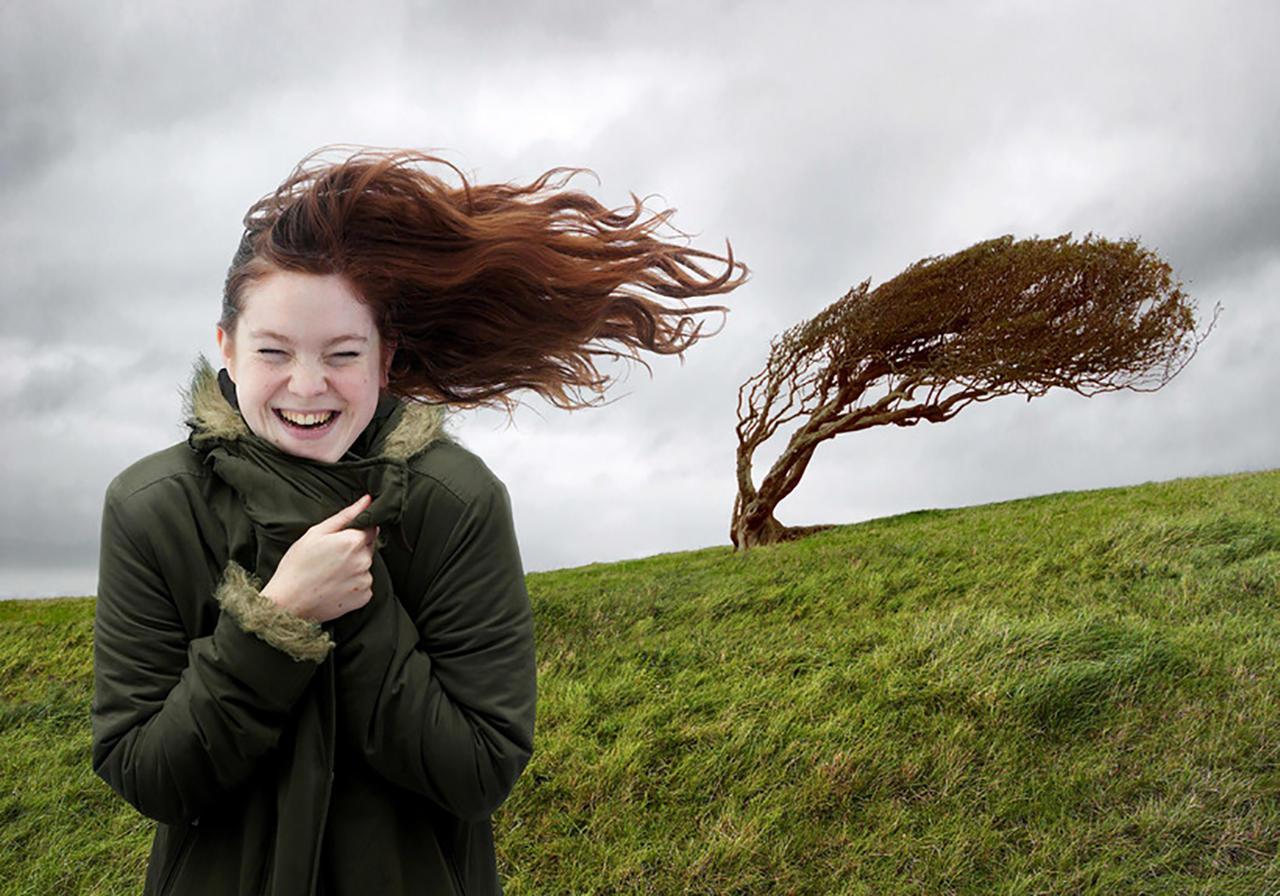 Картинки подул ветер