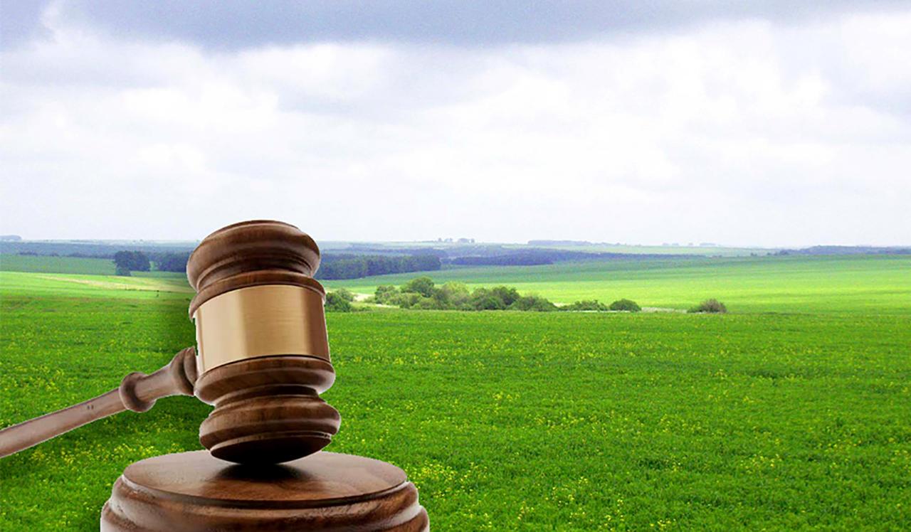 аукционы по продаже земельных участков